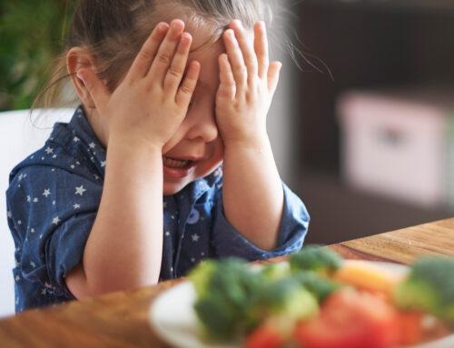 El meu fill no vol menjar: Consells i recomanacions